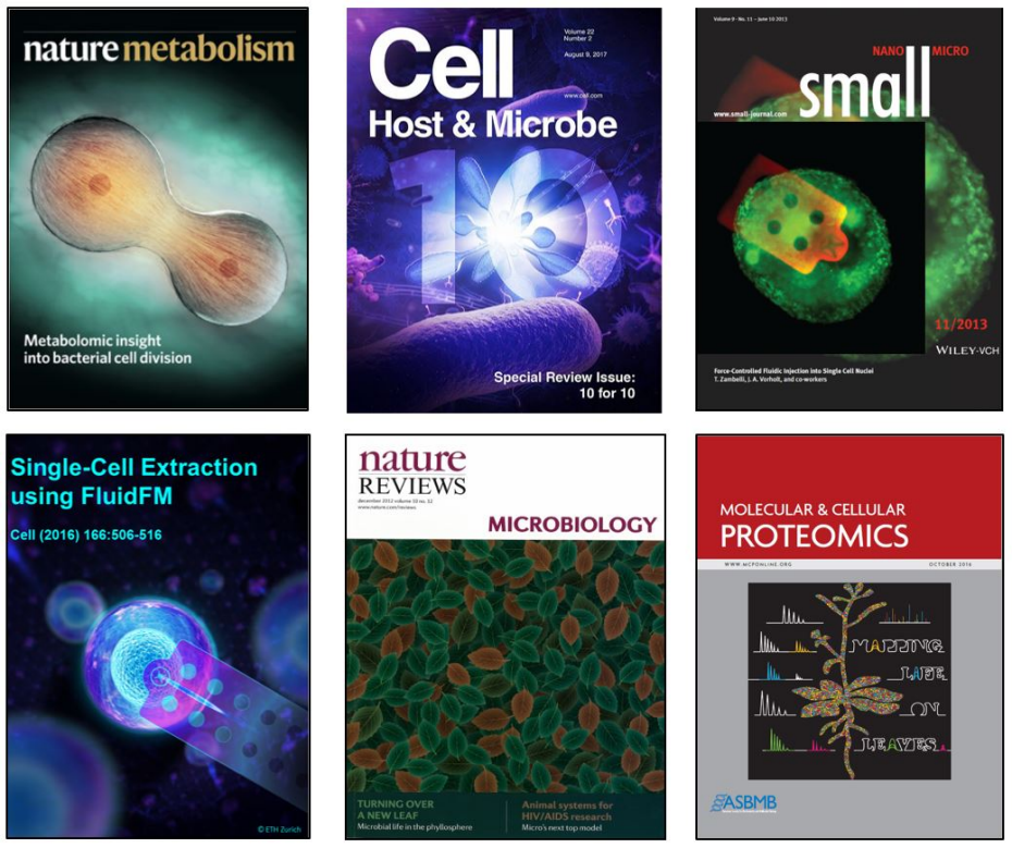 Vorholt lab research publication cover images